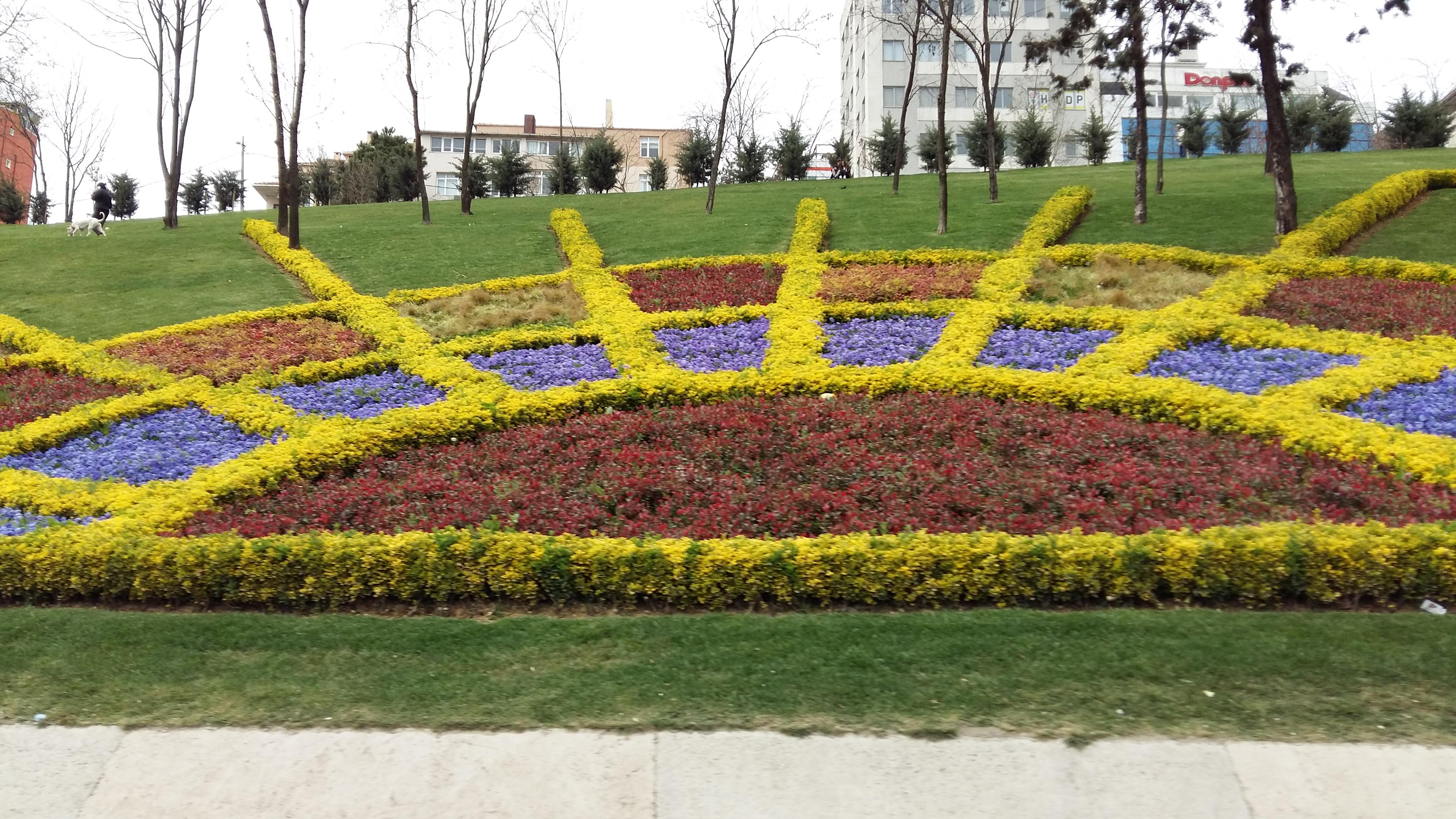 Crônicas de Istambul: Foram-se as tulipas, chegaram as rosas e azaleias!